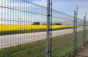 grindar från camigruppen